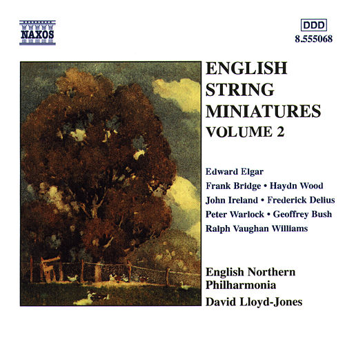 English String Miniatures, Vol. 2 by David Lloyd-Jones