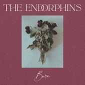 Burn de Endorphins