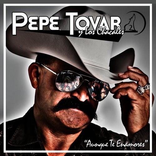 Aunque Te Enamores von Pepe Tovar Y Los Chacales