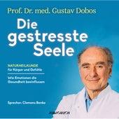 Die gestresste Seele - Naturheilkunde für Körper und Gefühle (Gekürzt) von Gustav Dobos