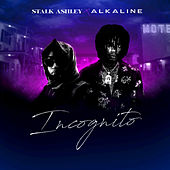 Incognito (feat. Alkaline) by Stalk Ashley
