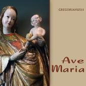Ave Maria by Gajdyczuk Trio