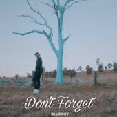 Don't Forget de Blueboy