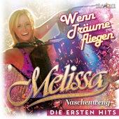 Wenn Träume fliegen: Die ersten Hits von Melissa Naschenweng
