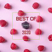 Best Of TAMED 2020 by Various Artists