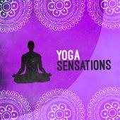 Yoga Sensations von Yoga