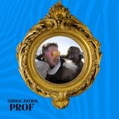 Animal Patrol by PROF