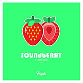 Soundberry (Florence (2021)) von Jaques Le Noir, Zulu Natives, Joe Le Blanc, Iag