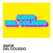 Amor de Colegio von Various Artists
