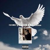 Spread Your Wings (So Fly) (feat. Raheem DeVaughn) de Stack Bundles