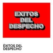 Exitos del Despecho by Various Artists
