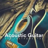 Acoustic Guitar Pop Instrumental von Various Artists