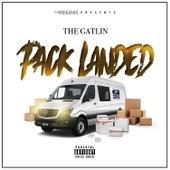 Pack Landed by Gatlin