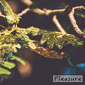 Pleasure by Nature Sounds (1)