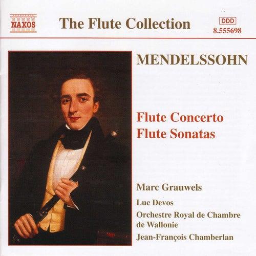 Mendelssohn: Flute Concerto in D Minor / Flute Sonatas by Various Artists