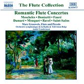 Flute Concertos (Romantic) de Marc Grauwels