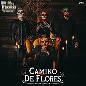 Camino de Flores de Edwin Luna y La Trakalosa de Monterrey