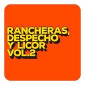 Rancheras, despecho y licor Vol. 2 by Various Artists