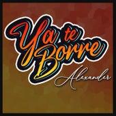 Ya Te Borre von Alexander
