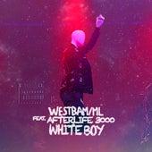 White Boy de Westbam