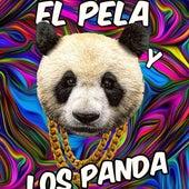 La Cumbiamba Tribunera de El Pela y los Panda