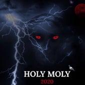 HOLY MOLY 2020 von Tmn Triggz
