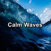 Calm Ocean Sound von Delta Waves