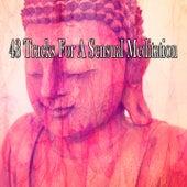 43 Tracks for a Sensual Meditation von Yoga
