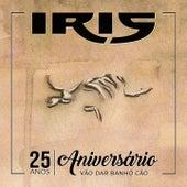 Aniversário 25 Anos (Vão Dar Banhó Cão) (Remisturado) de Iris