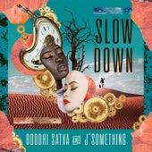 Slow Down by Boddhi Satva