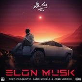Elon Musk by Da LES