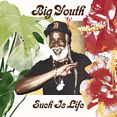 Such Is Life de Big Youth