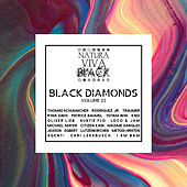 Black Diamonds, Vol. 22 by Various Artists