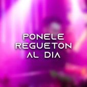 Ponele Reguetón al día by Various Artists