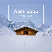 Austropop Winter de Various Artists