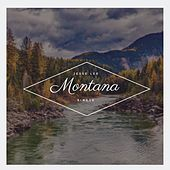 Montana (In the Summertime) by Jesse Lee