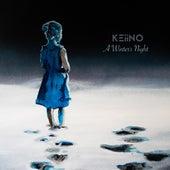 A Winter's Night de Keiino