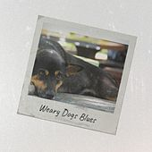 Weary Dogs Blues by Various Artists