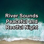 River Sounds Peaceful and Restful Night von Yoga