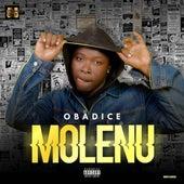 Molenu by Obadice