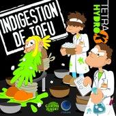 Indigestion de Tofu de Tetra Hydro K