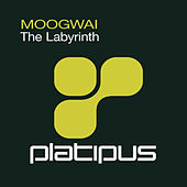 The Labyrinth by Moogwai