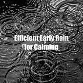 Efficient Early Rain for Calming by Rain Sounds XLE Library