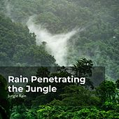 Rain Penetrating the Jungle von Deep Rain Sampling