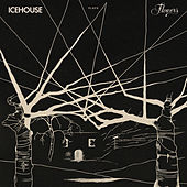 ICEHOUSE Plays Flowers Live de Icehouse