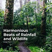 Harmonious Beats of Rainfall and Wildlife von Jungle Rain