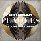 Plaques by Birdman
