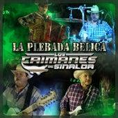 La Plebada Belica by Los Caimanes De Sinaloa
