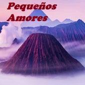 Pequeños Amores von Hector Tricoche, Ismael Rivera, Jerry Rivera, Jimmy El Leon