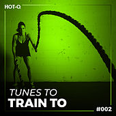 Tunes To Train To 002 by Various Artists